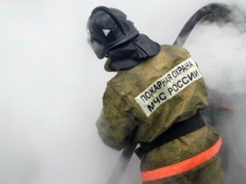 С начала года в тюменских садоводческих объединениях произошло уже 79 пожаров