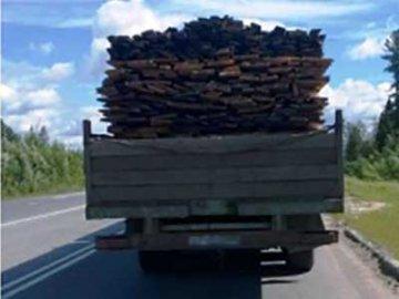 Лесопродукцию вывозили с нарушением